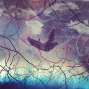 Flight Mixed Media: glass, water color, thread, paper, cotton, acrylic