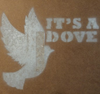 It's a Dove (Screen Print) $12