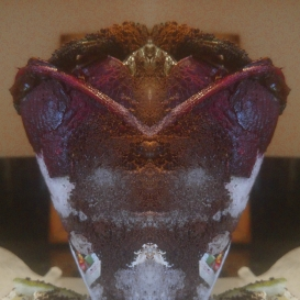 purple-cone